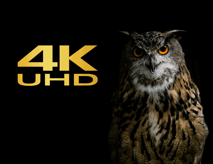 4K Ultra HD with Dash Cam